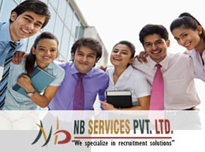 NB CONSULTANCY SERVICES